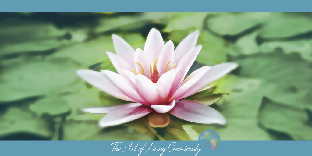 """Nurture in Nature"" – An Interview with Louise Finlayson - The Art of Living Consciously"