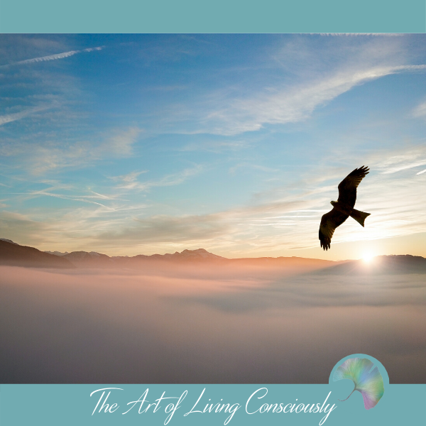 The 5 Principles of Conscious Living - The Art of Living Consciously