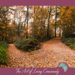 How to Make Decisions for a More Satisfying Life - The Art of Living Consciously