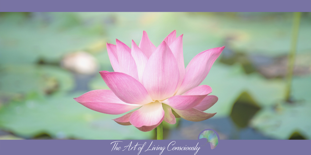 The First Step to Living Consciously: Mindfulness - The Art of Living Consciously