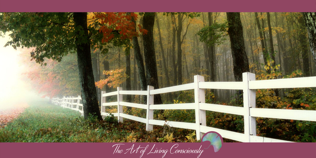 Everything You Need to Know About Boundaries - The Art of Living Consciously